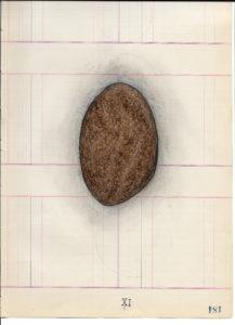 Drawing11-184